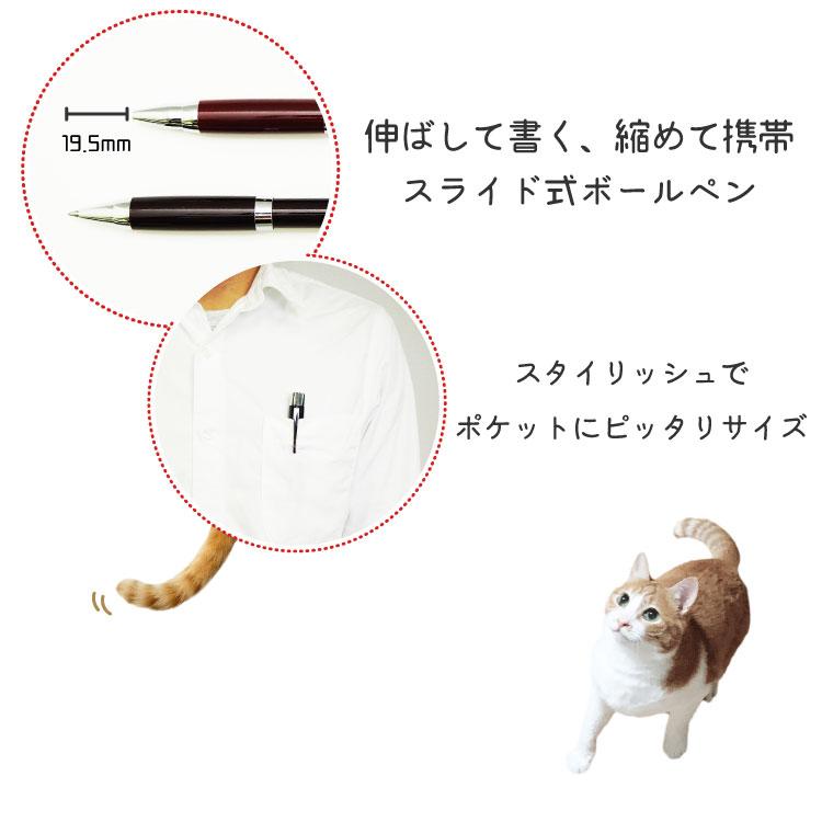 伸び縮み可能なスライド式ボールペン